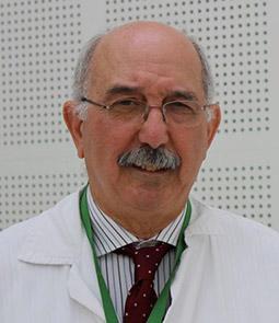 Professor Miguel Sanz image